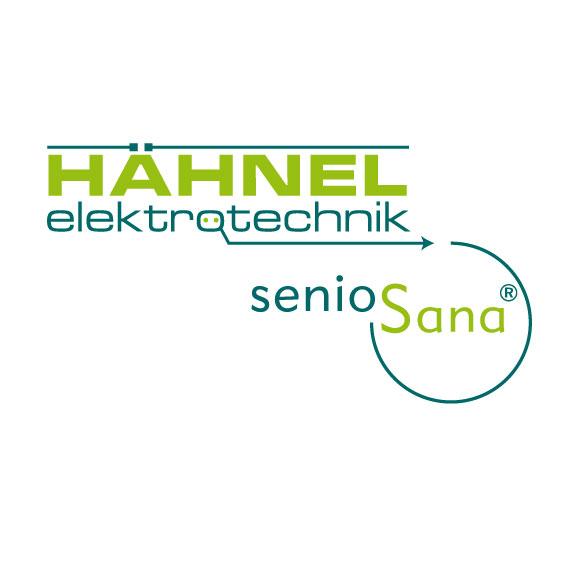 logo_haehnel2